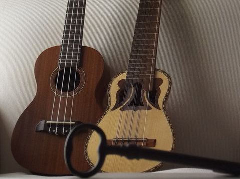 Guitar Online lessons - ukelele - charango Homeescasa Studio - Musik/Theater/Tanz