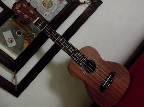 charango, ukelele, guitar lessons homeescasa studio - Music/Theatre/Dance