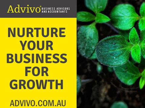 Accounting, Tax and Business Advisory Services - Brisbane - Pháp lý/ Tài chính