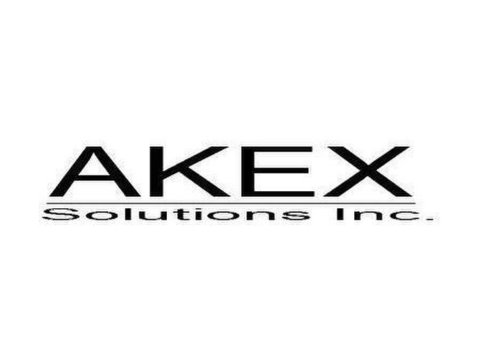 Akex as a worldwide trader of computers and peripherals. - الکترونیک