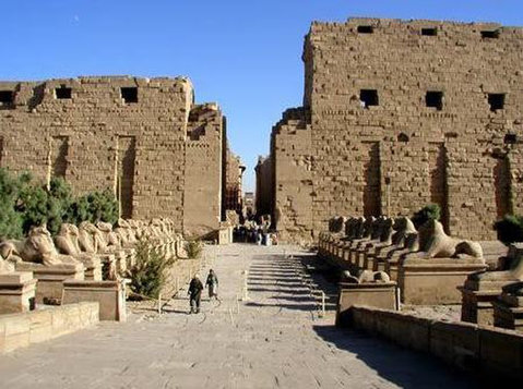 Best Deluxe Tours Egypt - Travel/Ride Sharing