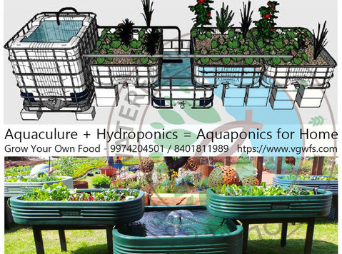 hydroponics and aquaponics farming system to grow food - Gardening