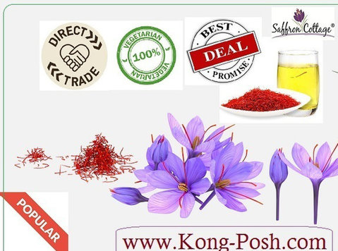 What is Kong Posh - Buy & Sell: Other