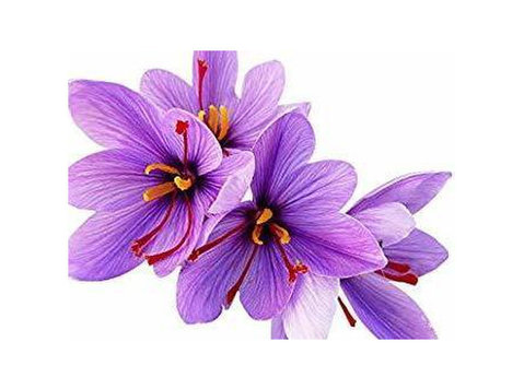 What is Saffron Powder❓ - Buy & Sell: Other