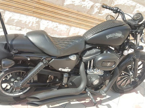 mint condition sportster harley davidson 883 matte black - מכוניות/אופנועים