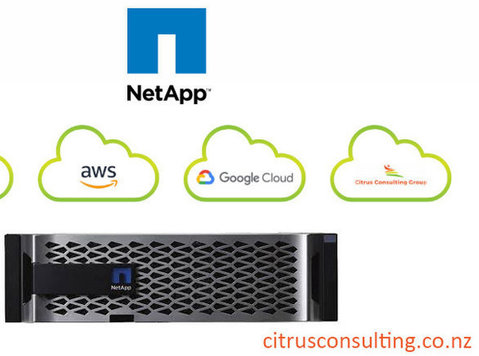 Netapp Storage Service - Citrus Consulting Group NZ - Informática/Internet