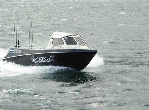 Viking 550 Ht - Sporting/Boats/Bikes