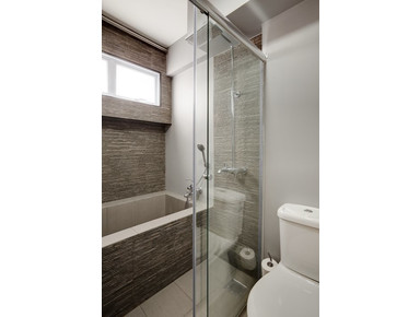 Professional Glass & Mirror install/Remove Specialist - Building/Decorating