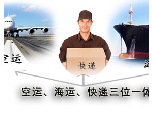 lcl seafreight door to door shipping service - Moving/Transportation