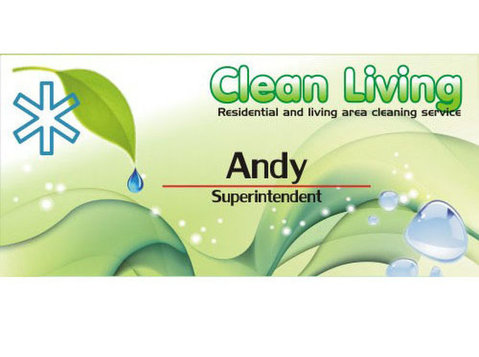Clean Living Tw - household cleaning service - Домакинство / ремонт