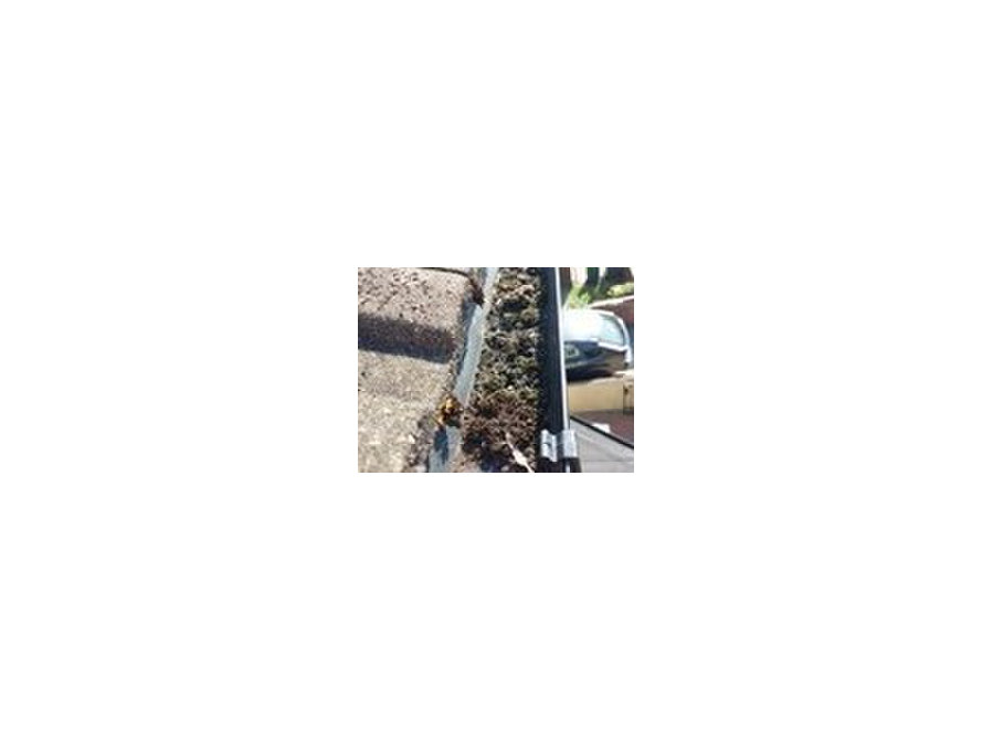 Southampton Gutter Cleaning - Household/Repair