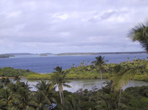 Oceanfront Lot In Tonga For $5,000 Or B/o - Egyéb