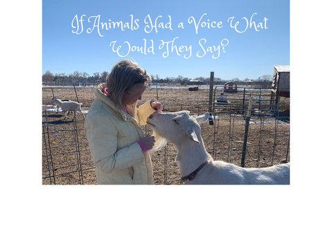 Animal communication, animal whisperer, pet psychic, pet med - Lain-lain