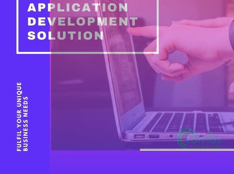 Custom Web Application Development Solution to fulfil your U - Services: Other