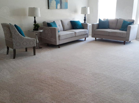 Carpet cleaning services in Newton, MA - Καθαριότητα
