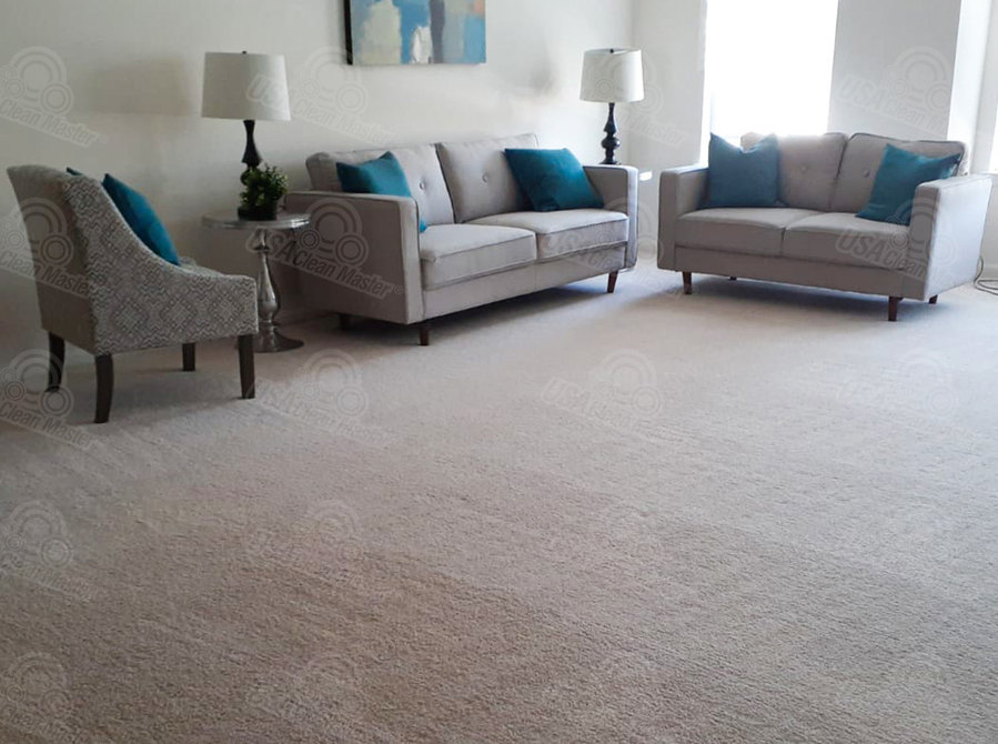 Carpet cleaning services in Newton, MA - Cleaning