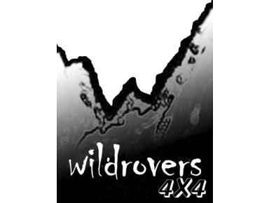 Wildrovers 4x4 Ltd - Car Repairs & Motor Service