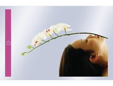 Aesthetic-Agentur - Schönheitschirurgie