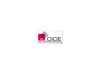 CICE, Escuela Profesional de Nuevas Tecnologías - Universidades