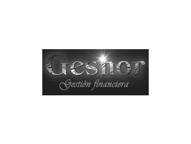 Gesnor, profesionales de los cobros - Financial consultants