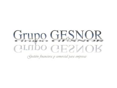 Grupo Gesnor - Consultancy