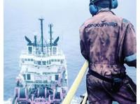Merchant Navy The Maritime Academy (1) - Coaching & Training