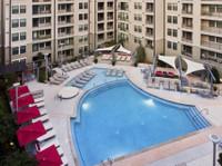 Elliston 23 Apartments (2) - Serviced apartments