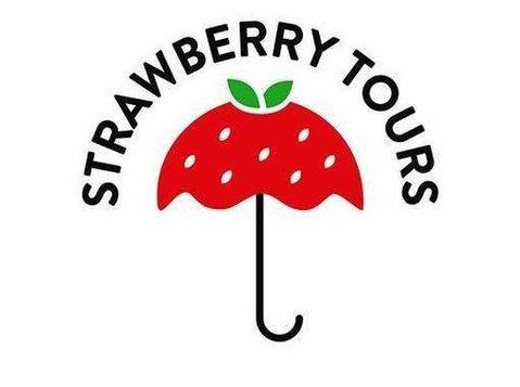 Strawberry Tours - Free Walking Tours Buenos Aires - Tourist offices