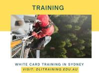 Dli Training (2) - Coaching & Training