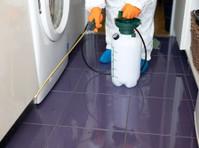 Pro Pest Control Sydney (1) - Property inspection