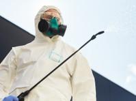 Pro Pest Control Sydney (3) - Property inspection