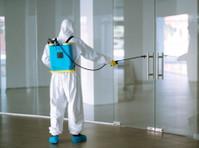 Pro Pest Control Sydney (4) - Property inspection