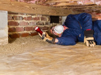 Pro Pest Control Sydney (8) - Property inspection