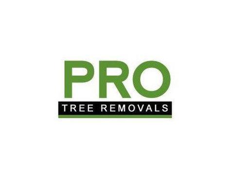 Pro Tree Removal Brisbane - Home & Garden Services