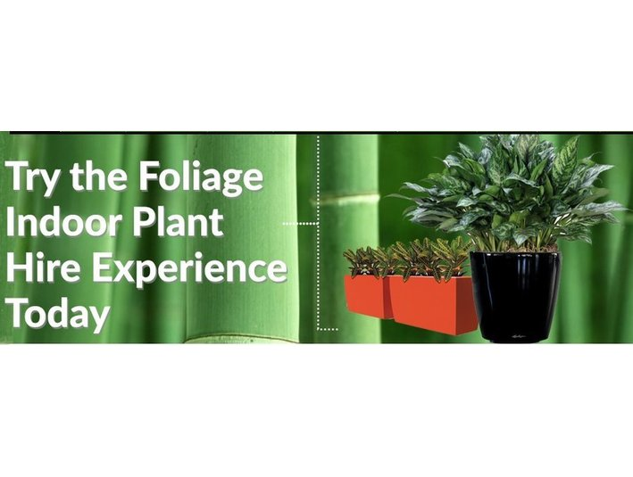 Foliage Indoor Plant Hire - Gardeners & Landscaping