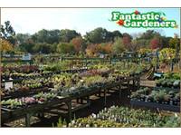 Fantastic Gardeners Sydney (1) - Gardeners & Landscaping