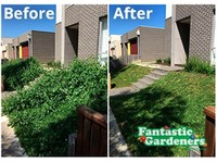 Fantastic Gardeners Sydney (4) - Gardeners & Landscaping