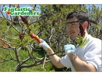 Fantastic Gardeners Sydney (6) - Gardeners & Landscaping