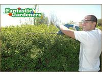 Fantastic Gardeners Sydney (7) - Gardeners & Landscaping