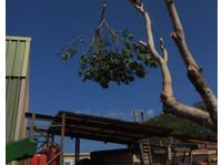 Roebuck Tree Service (1) - Gardeners & Landscaping