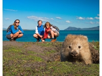 Aussie Trip Advisor - Travel Agencies