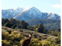 Aussie Trip Advisor (3) - Travel Agencies