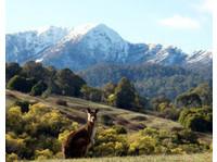 Aussie Trip Advisor (7) - Travel Agencies