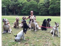 Go Fetch Dog Walking and Boarding (2) - Pet services