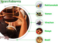 Ayur Healthcare - Ayurveda (4) - Alternative Healthcare