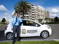 Sentinel Security Group (2) - Security services