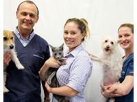Gordon Vet Hospital (4) - Hospitals & Clinics