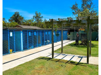 Solar Lodge Boarding Kennel and Cattery (1) - Pet services