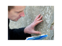 Building Dilapidation Surveys and Reports (3) - Property inspection