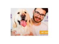 Pet Professional Insurance (1) - Pet services